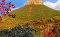 八路军抱犊崮抗日根据地遗址是枣庄三大红色旅游景点之一