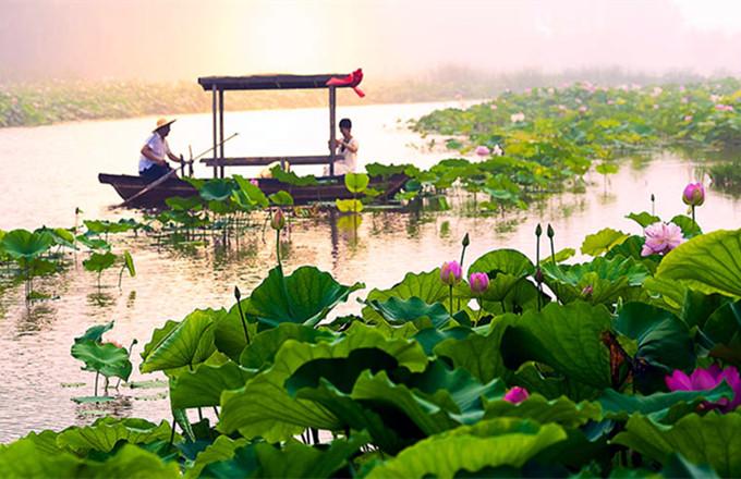 台儿庄旅游景点攻略之台儿庄运河湿地公园