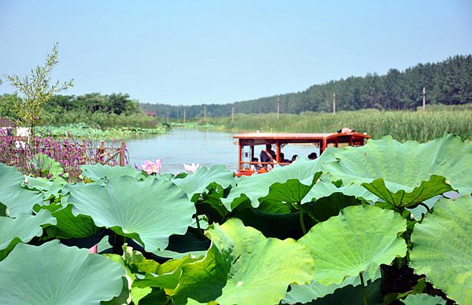 台儿庄运河湿地公园景区文化