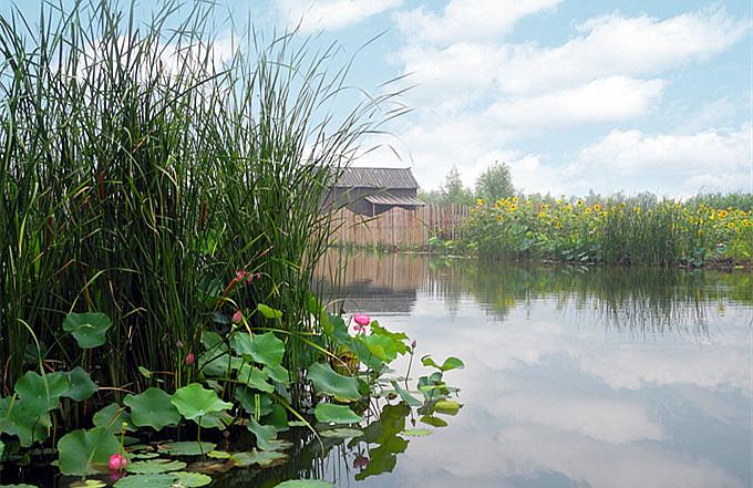 台儿庄运河湿地公园交通指南