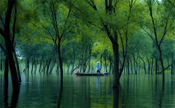 台儿庄国家运河湿地公园自驾游团购