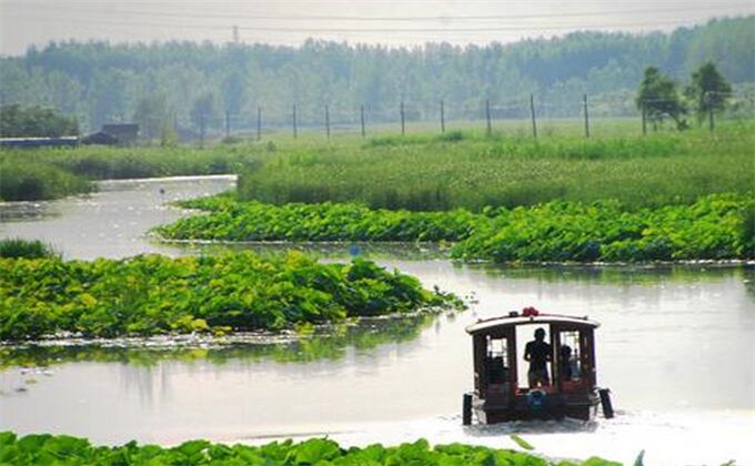 台儿庄国家运河湿地公园自驾游多少钱