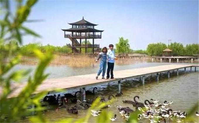 台儿庄双龙湖观鸟园门票多少钱