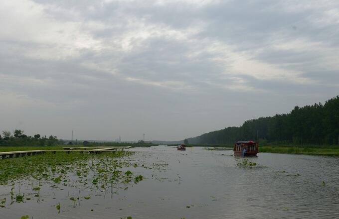 台儿庄二日游之台儿庄运河湿地公园