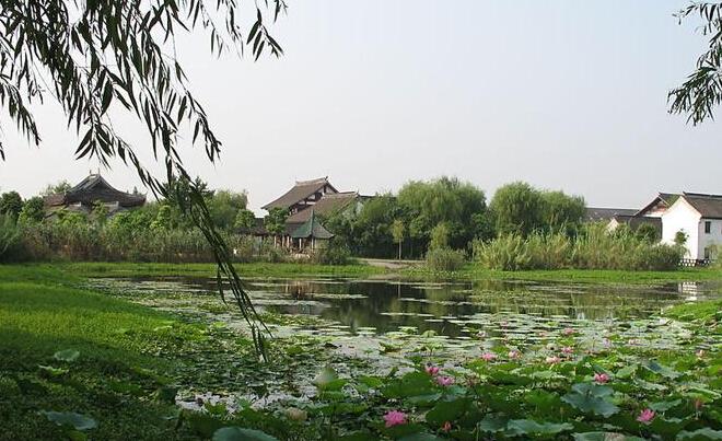微山湖红荷湿地与台儿庄古城有多远